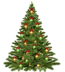 christmas-tree-1808558__480
